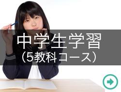 中学生学習(5教科コース)