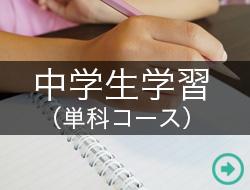 中学生学習(単科コース)